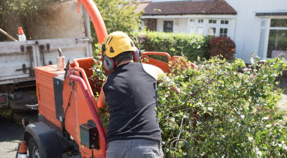 Expert from Olathe tree removal in Olathe, KS using the wood chipper